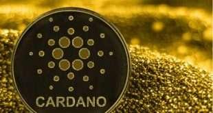 Криптовалюта Cardano  рухнула на 33%