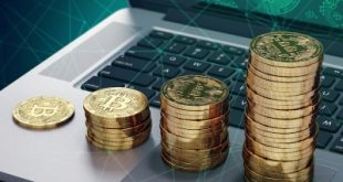 Количество адресов, содержащих более 1000 биткоинов, достигло нового максимума