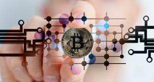 Отчет: 10% биткоинов оставались без движения более десяти лет