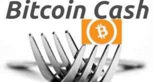 Криптобиржи отчитались о зачислении пользователям токенов BCH ABC и BCH SV