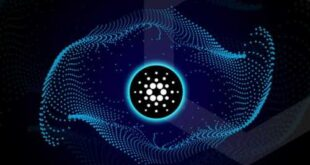 Input Output Hong Kong объявляет о запуске тестовой сети AlonzoBlue2.0