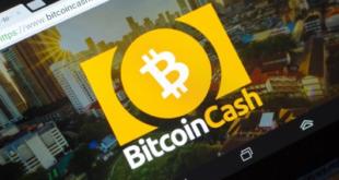 Хешрейт Bitcoin Cash обвалился почти сразу после халвинга