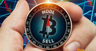 Советы по инвестированию в криптовалюты во времена медвежьего рынка