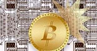 Исследование: почти треть миллионеров интересуются криптовалютами