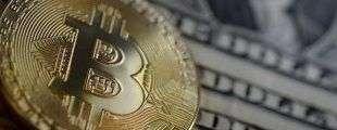 Криптобиржи ожидают увеличения интереса к биткоину после сокращения награды майнеров