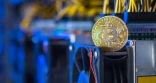 Как работает Форекс и валютная торговля