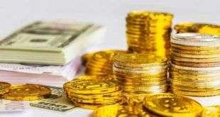 Топ-менеджеров биржи Coinnest подозревают в получении взятки за листинг монеты