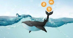 Крипто-киты вывели сегодня с OKEx и Bitfinex $66 млн на свои кошельки