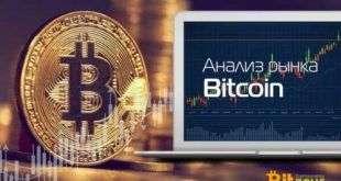 Вилли Ву утверждает, что цена Bitcoin не поднимется до халвинга