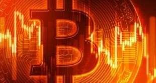 Глобальный кризис хорош для криптовалют