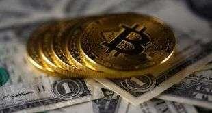 Криптовалюта EOS упала на 20%