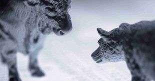 Binance проведет делистинг токенов с кредитным плечом биржи FTX
