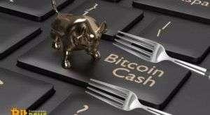 Ledger возобновляет обслуживание Bitcoin Cash