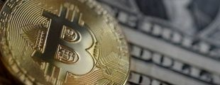 Выгодные инвестиции в криптовалюту
