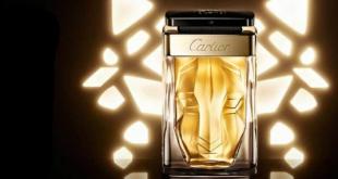 Мир мужских ароматов — что такое парфюмерия?